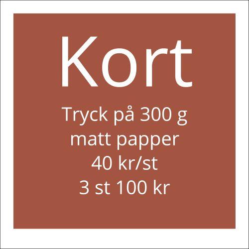 Kort. Tryck på 300 gr papper. 40 kr/st. 3 st 100 kr.